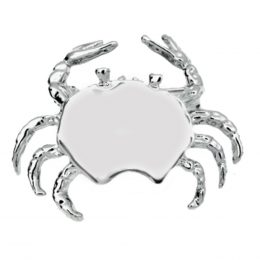 Silver-tone Zodiac Sign Cancer Crab Pin