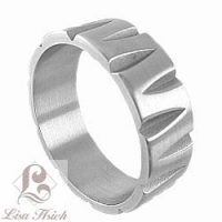 Urban-chic Stainless Steel Brushed Ring